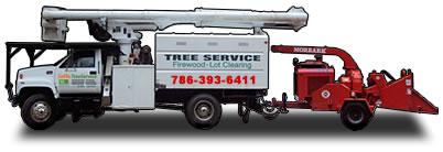 Truck Tree Service