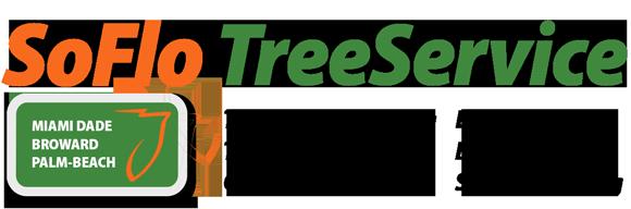 SoFlo Tree Service