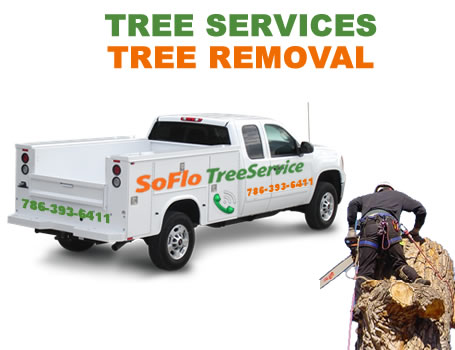 Tree Service Homestead